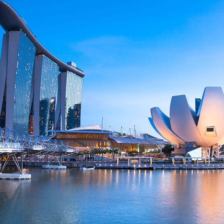 Flights to Singapore →